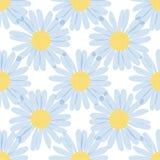 Seamless pattern - camomiles on white background. Seamless pattern - camomiles on the a white background Stock Photos