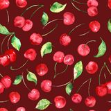 Watercolor Cherries fruit seamless pattern on burgundy background. Seamless pattern can be used for scrapbooking, cards and so on Royalty Free Stock Photo