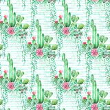 Watercolor striped seamless pattern background with succulents and cactus. Seamless pattern can be used for scrapbooking, wallpaper, cards and so on Stock Image