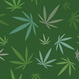 Cannabis leaves texture seamless background. Marijuana seamless pattern. illustration / wallpaper. Duplicate this pattern seamlessly to fill areas and make Royalty Free Stock Image