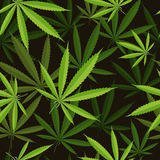 Seamless pattern of cannabis leaf Stock Image