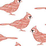 Seamless pattern with cardinals. Doodle hand drawn background. Stock Image