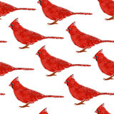 Seamless pattern with cardinals. Stylish Animal background. Stock Photography