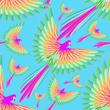 Seamless pattern of the Caribbean parrot flying. On a background of the sky vector illustration Stock Photography