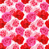 Seamless pattern of carnations flowers Royalty Free Stock Images