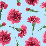 Seamless pattern carnations flowers. Floral background, wallpaper,  wrapping, packing paper. Elegance pattern with realistic red flowers. Vintage vector Stock Photography
