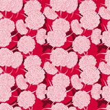 Seamless pattern of carnations Royalty Free Stock Image