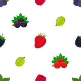 Seamless pattern of cartoon berries. Raspberry, blackberry, gooseberry, red currant Royalty Free Stock Photography