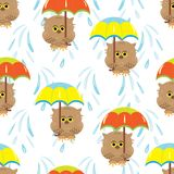 Seamless pattern with cartoon brown owls and colorful umbrellas. The background is white with the falling raindrops.Vector illustration.Template for printing on Stock Photography