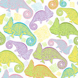Seamless pattern with cartoon colorful chameleons. Stock Image