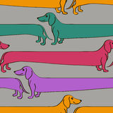 Seamless pattern with cartoon Dachshund dogs Stock Image