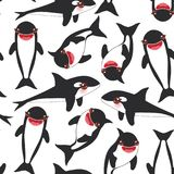 Seamless pattern Cartoon grampus orca, killer whale, sea wolf Kawaii with pink cheeks and positive smiling on white background. Ve. Ctor illustration Royalty Free Stock Photos