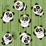 Seamless  pattern with cartoon pandas on the background of bambo Royalty Free Stock Photo