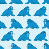 Seamless pattern from cartoon walruses Stock Image