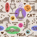 Seamless pattern with cat doing yoga position. Stock Photography