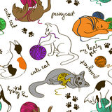 Seamless pattern with cats playing ball of yarn Royalty Free Stock Images