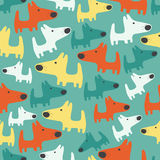 Seamless pattern with cats Stock Images