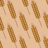 Seamless pattern of cereal ears Stock Photography