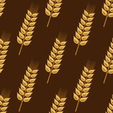 Seamless pattern of cereal golden wheat ears Stock Image