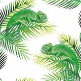 Seamless pattern chameleon on the banana leaves white  Royalty Free Stock Photo