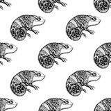 Seamless pattern chameleon. Lizard. Hand Drawn Reptile, vector illustration in doodle style Royalty Free Stock Image