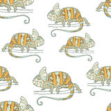 Seamless pattern with chameleon Stock Image