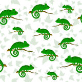 Seamless pattern with chameleons. And green leaves Stock Photo