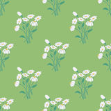 Seamless Pattern with Chamomile Bouquet Royalty Free Stock Photo