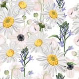 Seamless pattern with chamomile camomile, leaves, and anemones flowers. royalty free illustration