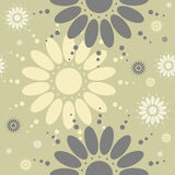 Seamless pattern with chamomile flowers on light green backgroun Royalty Free Stock Photography