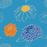 Seamless pattern with chamomile, marigold and daisy flowers. Vector illustration, sketch Stock Photos