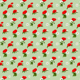 Seamless pattern with chamomile and poppies Stock Photography