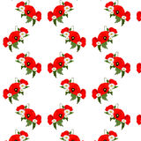 Seamless pattern with chamomile and poppies Royalty Free Stock Photography