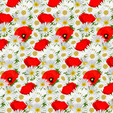 Seamless pattern with chamomile and poppies Royalty Free Stock Image