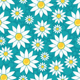 Seamless pattern with chamomiles Stock Images