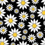Seamless pattern with chamomiles Stock Photo
