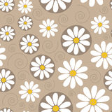 Seamless pattern with chamomiles Royalty Free Stock Photos