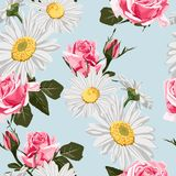 Seamless pattern with chamomiles and pink roses. royalty free illustration