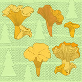 Seamless  pattern with chanterelle mushrooms and spruces Royalty Free Stock Photos