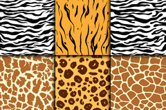 Seamless pattern with cheetah skin. vector background. Colorful zebra and tiger, leopard and giraffe exotic animal print Stock Photography
