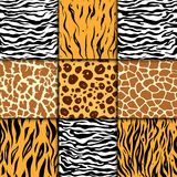 Seamless pattern with cheetah skin. vector background. Colorful zebra and tiger, leopard and giraffe exotic animal print Stock Photos