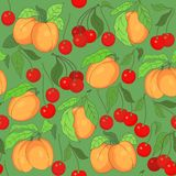 Seamless pattern with cherries and apricots Stock Photography