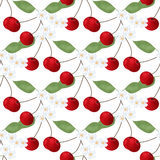 Seamless pattern with cherry anf flowers on white Royalty Free Stock Images