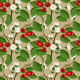 Seamless pattern with cherry berries and blossom Royalty Free Stock Photos