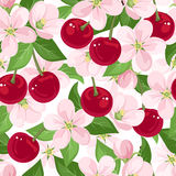 Vector seamless pattern with cherry berries and fl. Seamless pattern with red cherry berries, pink flowers and green leaves on a white background Stock Image