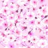 Seamless pattern with cherry blossom, Blossoming Oriental , Sakura Flowering Spring Festival Hanami Stock Photography