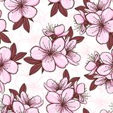 Seamless pattern with cherry blossom Stock Photo