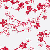 Seamless pattern with cherry blossoms Stock Photography