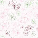 Seamless pattern of cherry blossoms Stock Photography