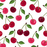 Vector seamless pattern with cherry. Royalty Free Stock Images